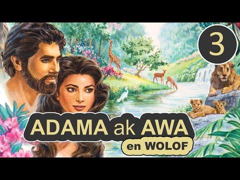 Histoire ADAMA ak AWA - Episode 3